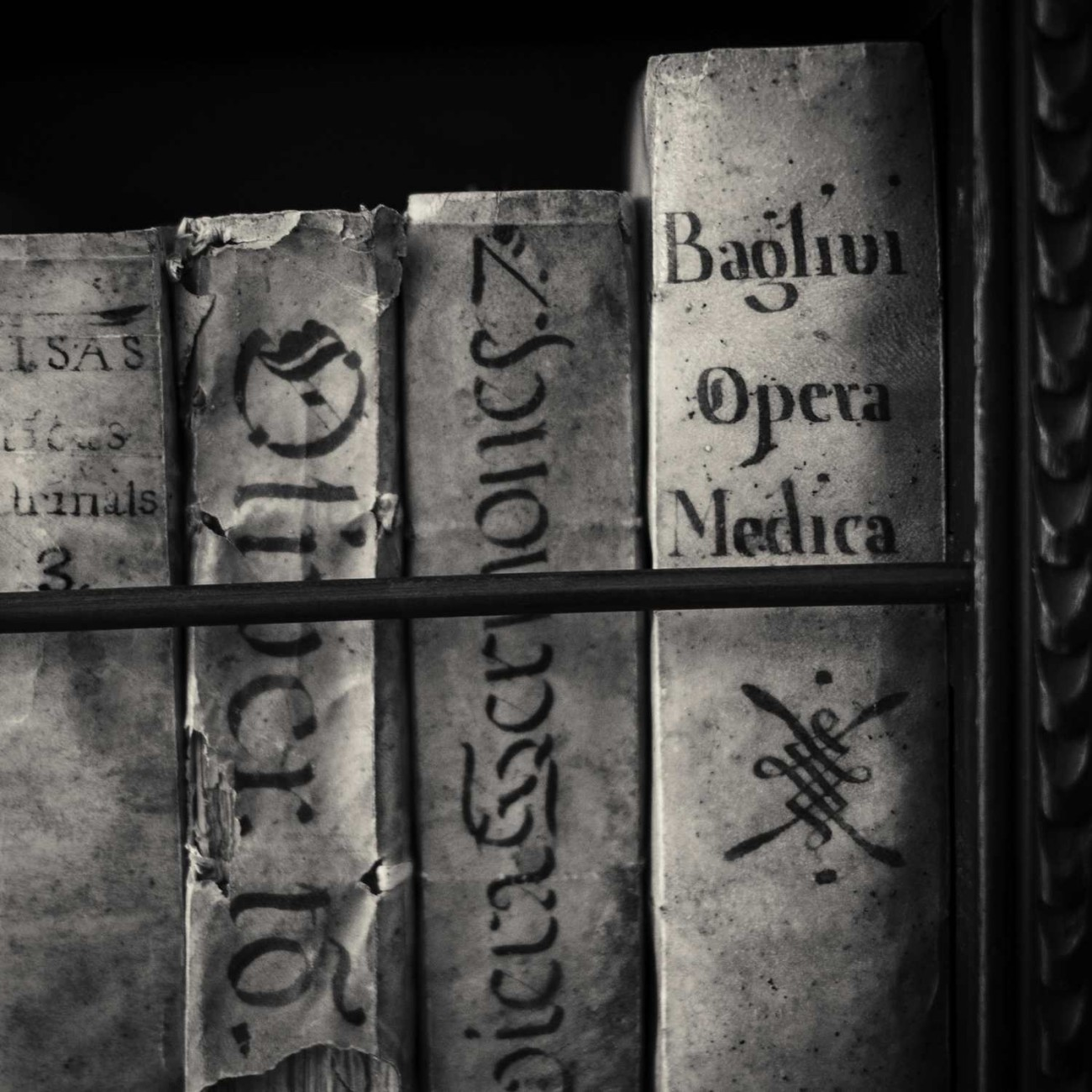 Four vellum books, Charterhouse library, Valedmossa, Spain, 2014