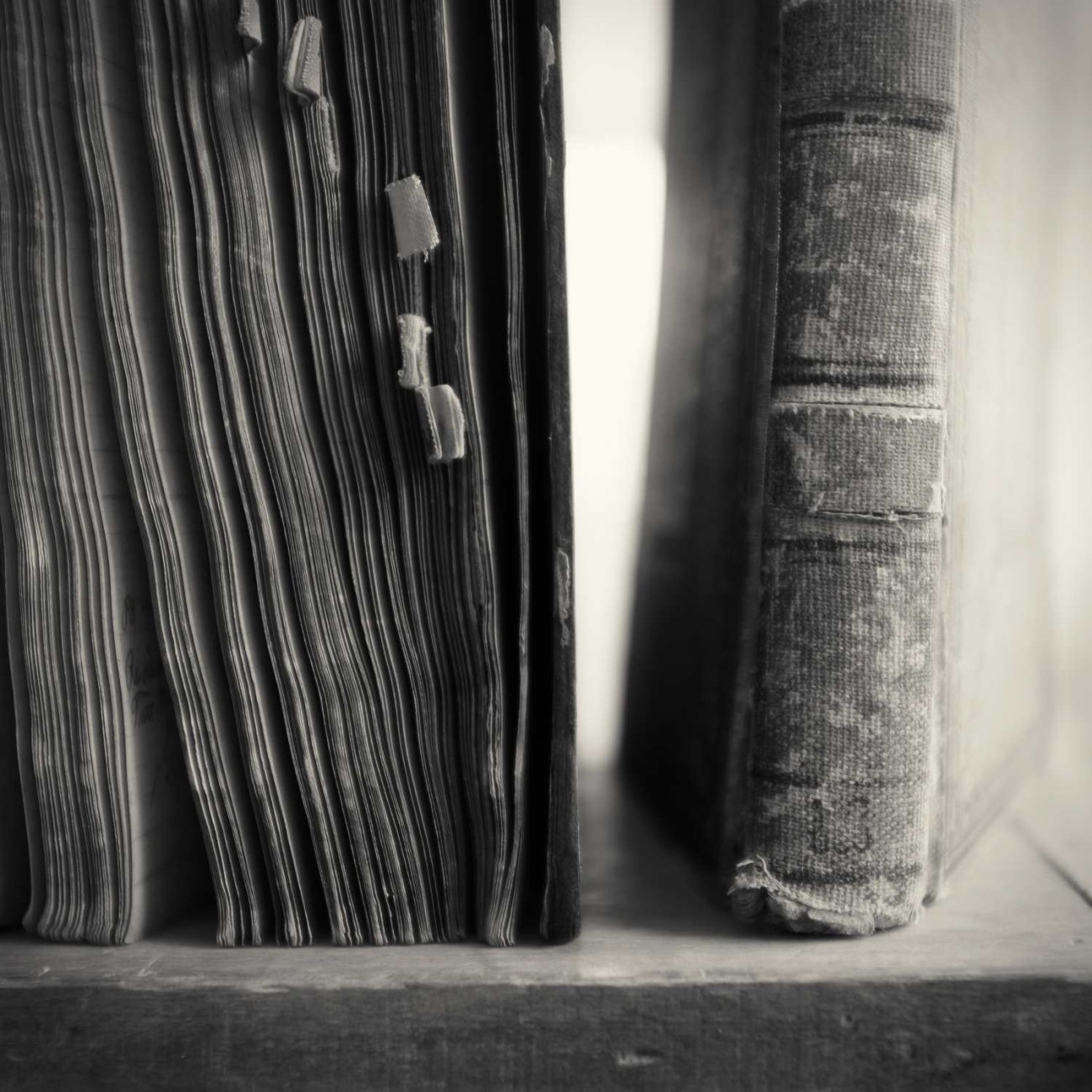 Old ledgers, 2015