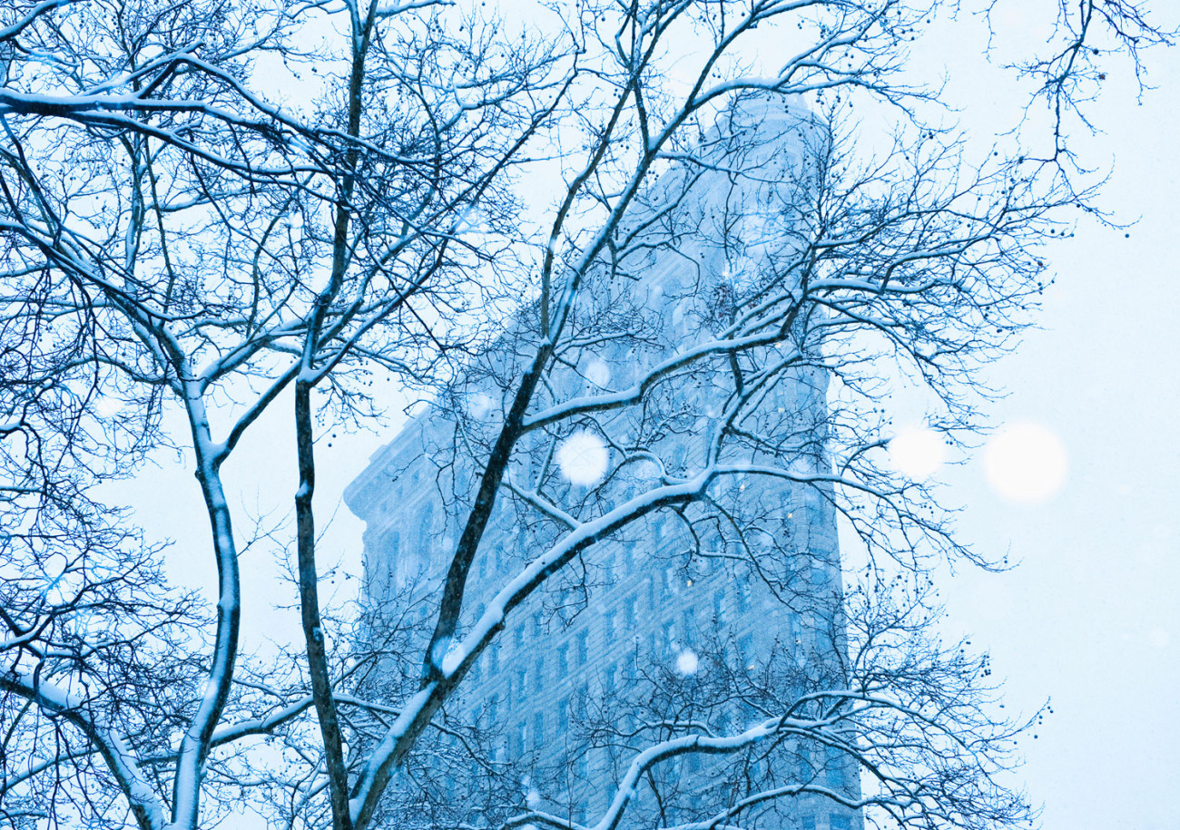 Flatiron and winter storm, New York, 2010