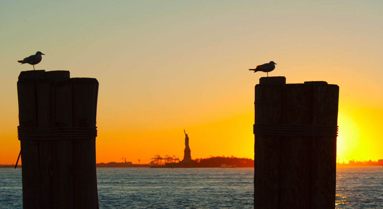 Two piers and gulls, Statue of Liberty, NY 2010