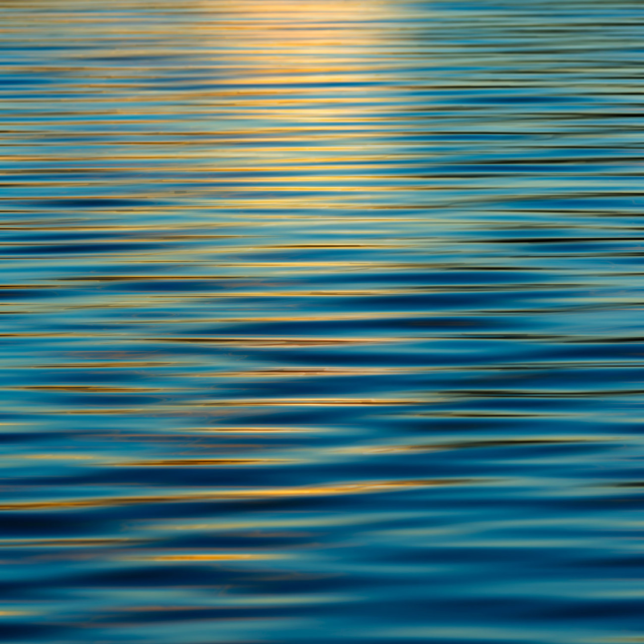 Sunset reflection on Walden Pond, 2013