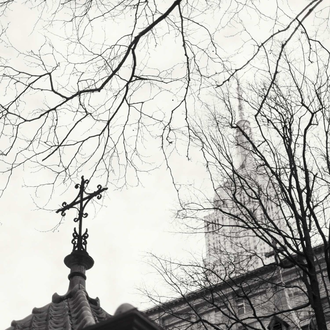 Two crosses and branches, New York, 2014
