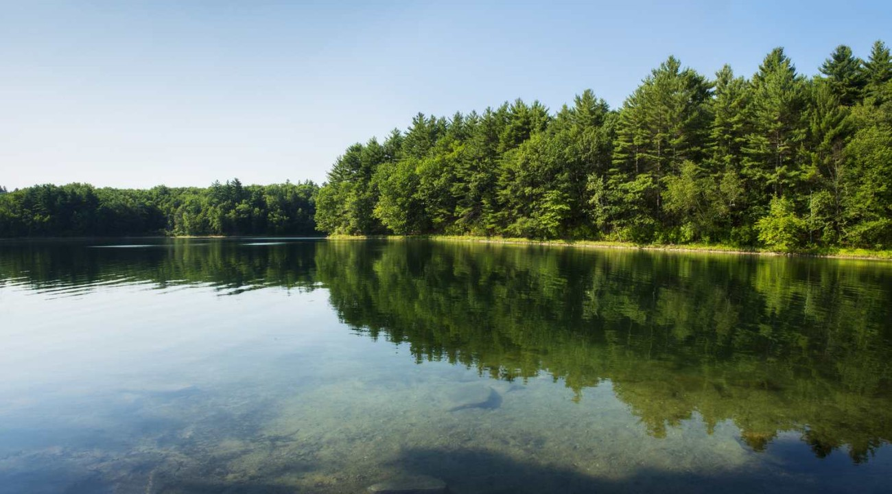 Walden Pond 36