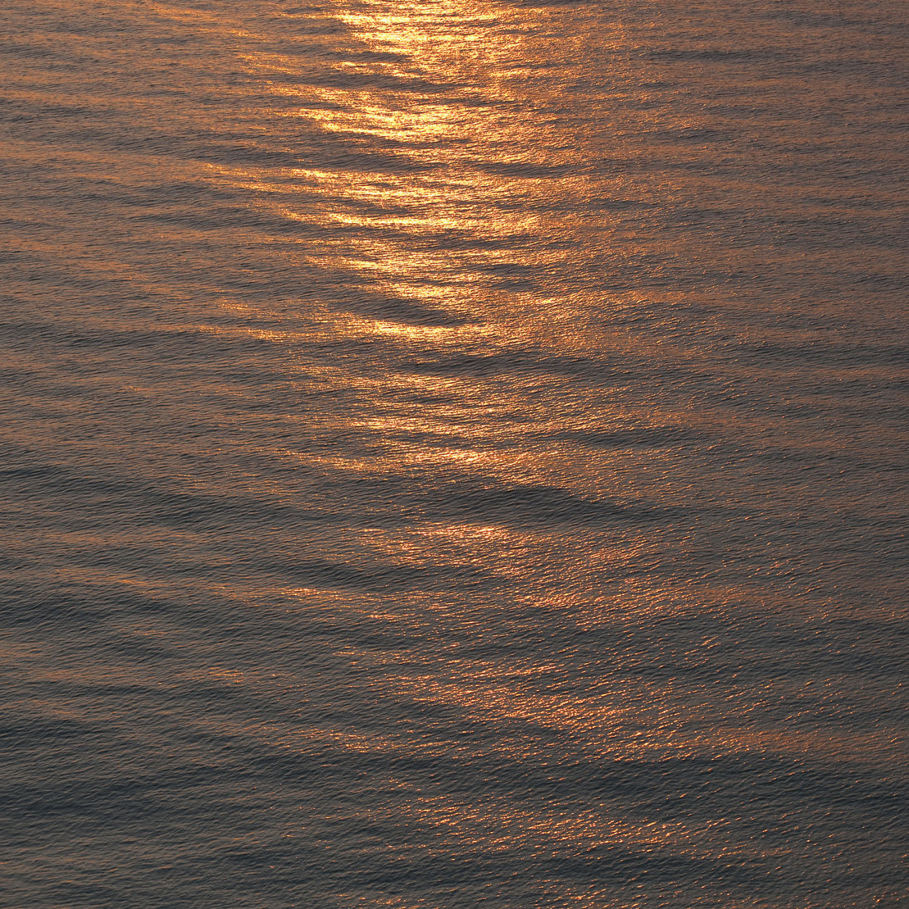Sunrise reflection on calm seas, Florida, 2009