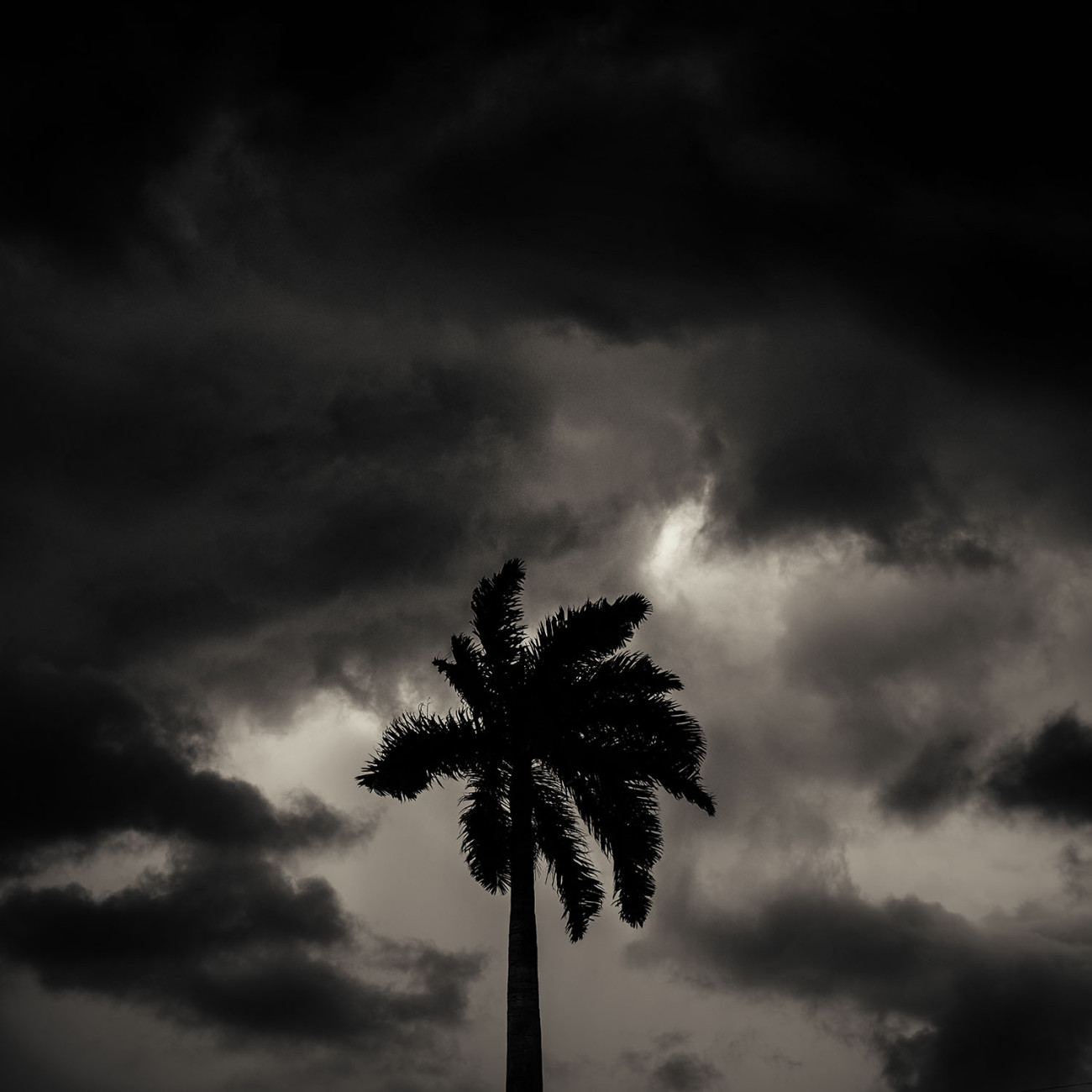 Approaching thunderstorm, Florida, 2017