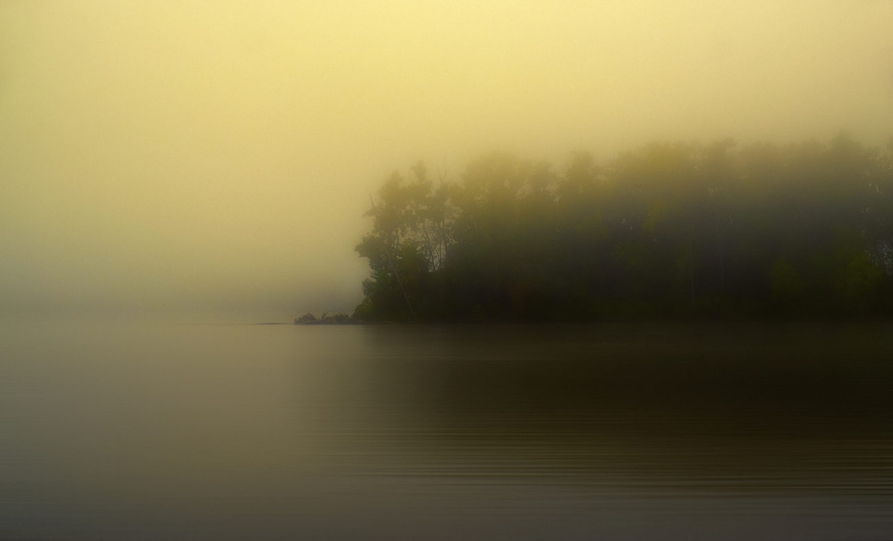 Foggy morning on the Hudson,NY, 2013