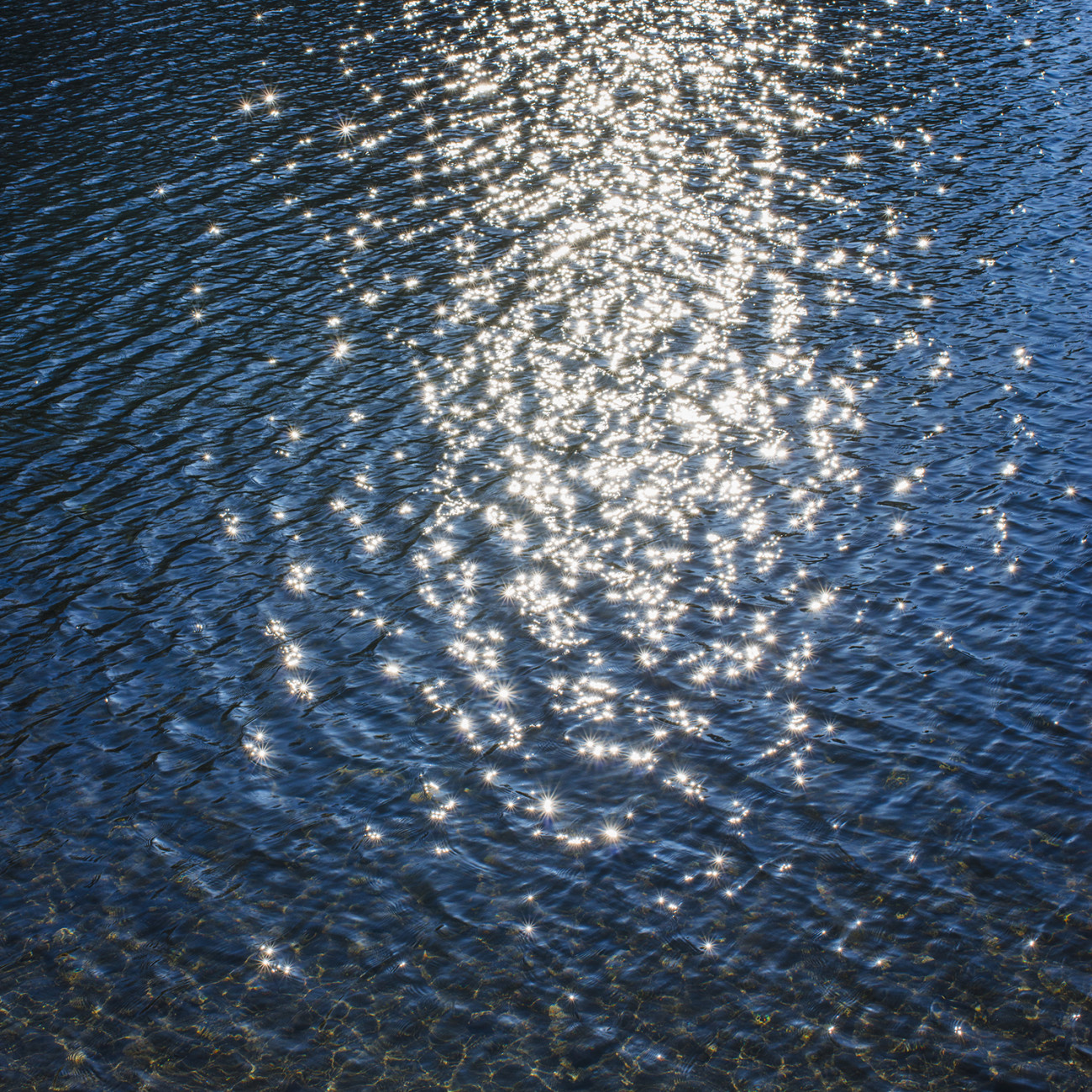 Late day sun, Walden Pond, Version 2, 2013