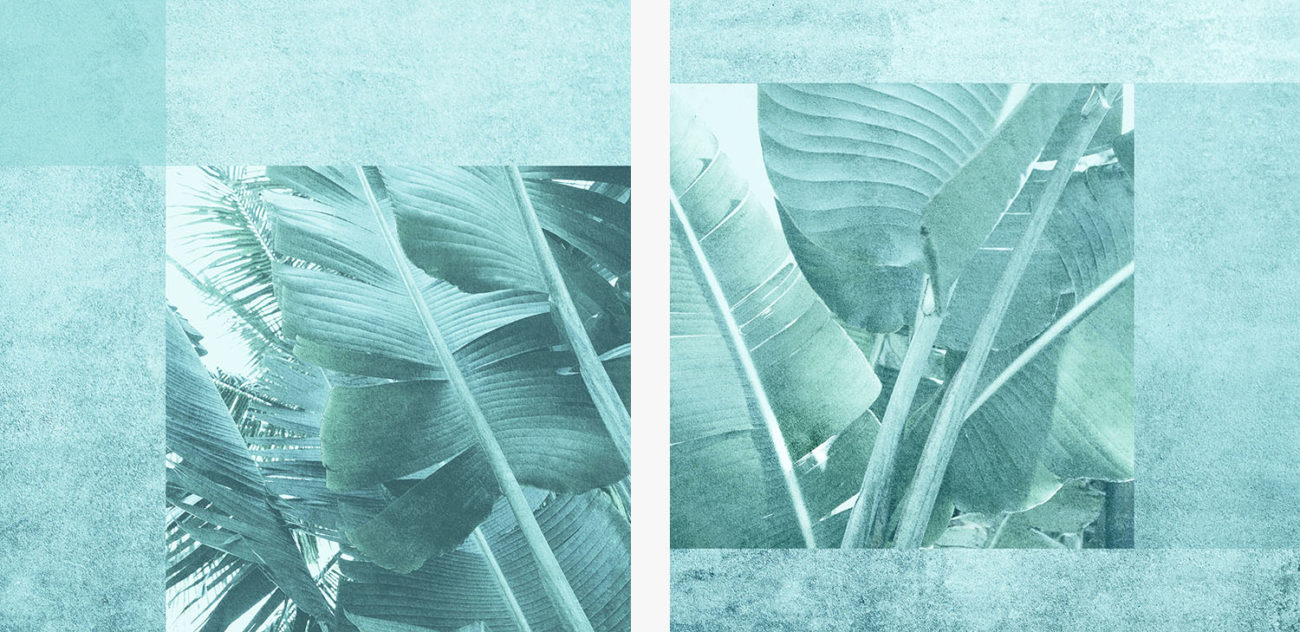Banana leaves diptych, 2019