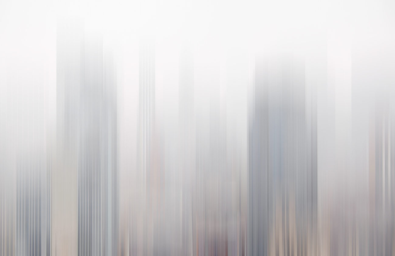 Morning fog, 2016