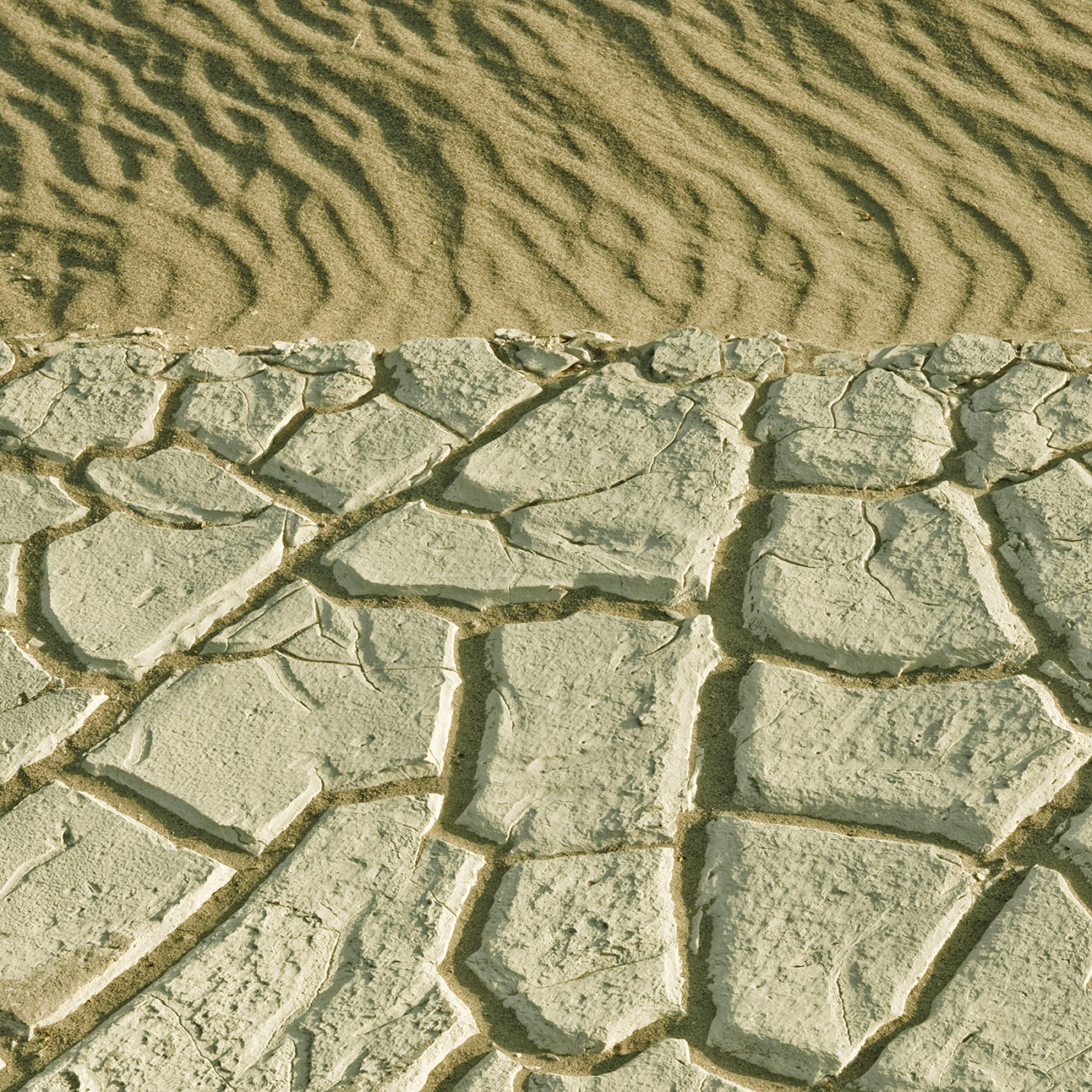 Cracked earth, Death Valley, 2009