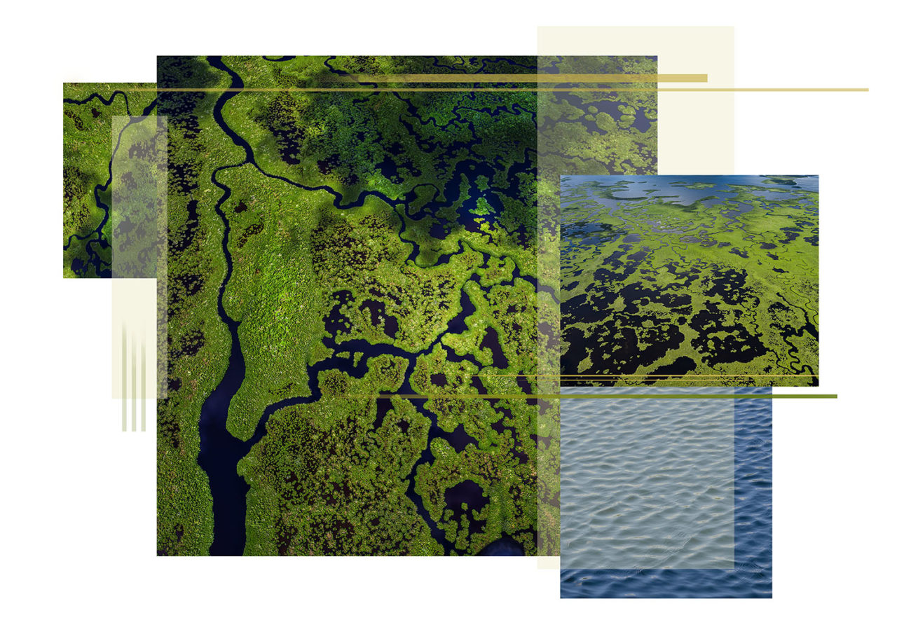 Everglades river flow