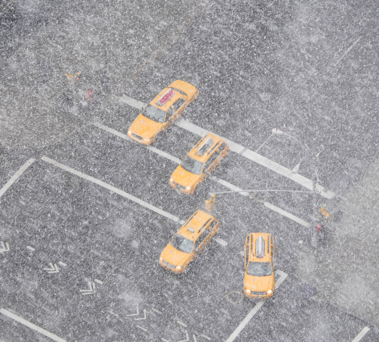 Four taxis in a snow storm, NY, 2015