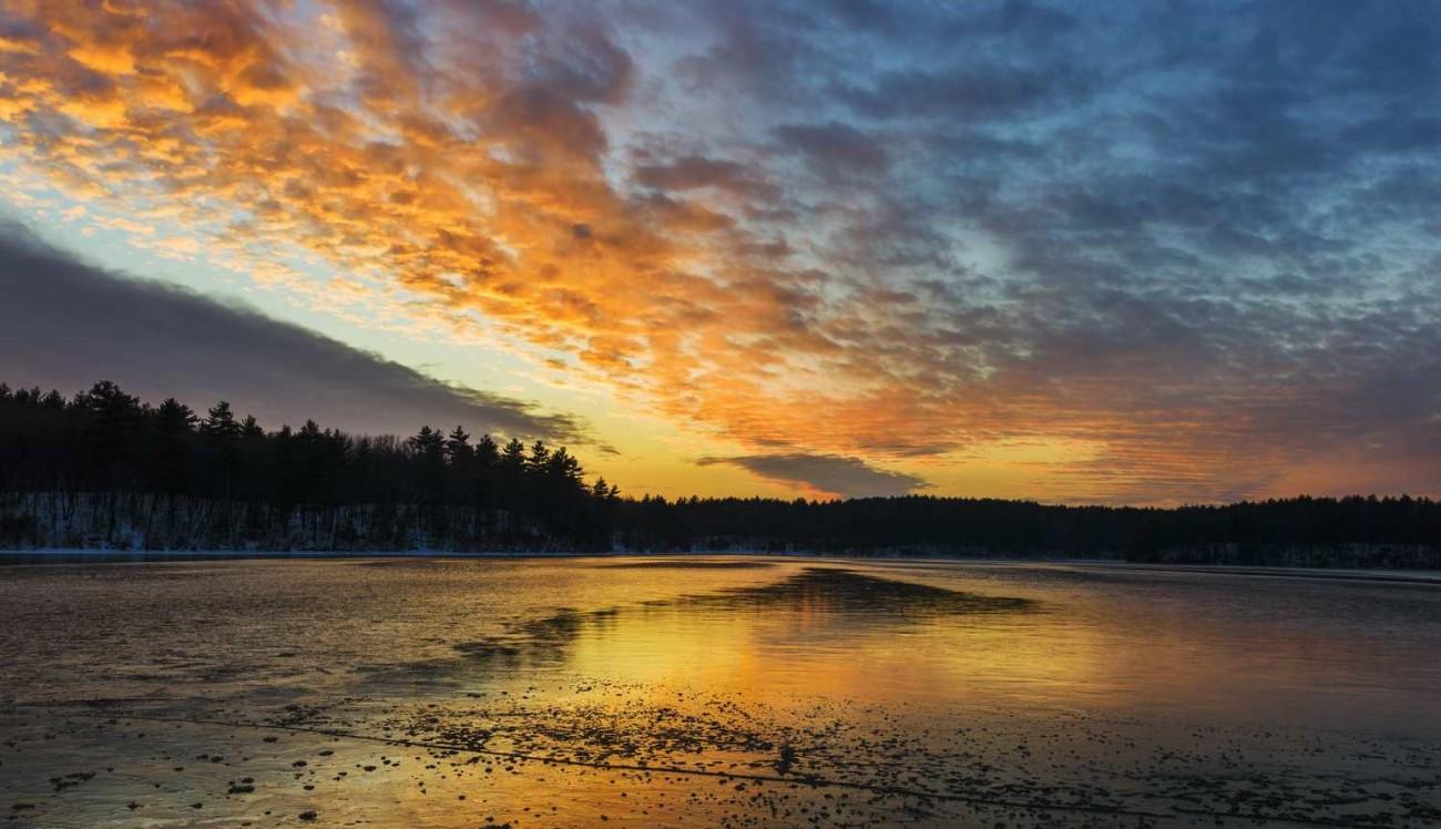 Walden Pond 1