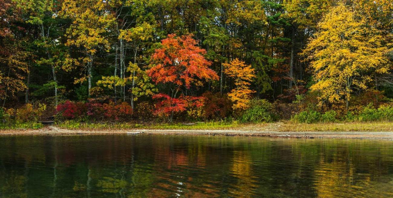 Walden Pond 24