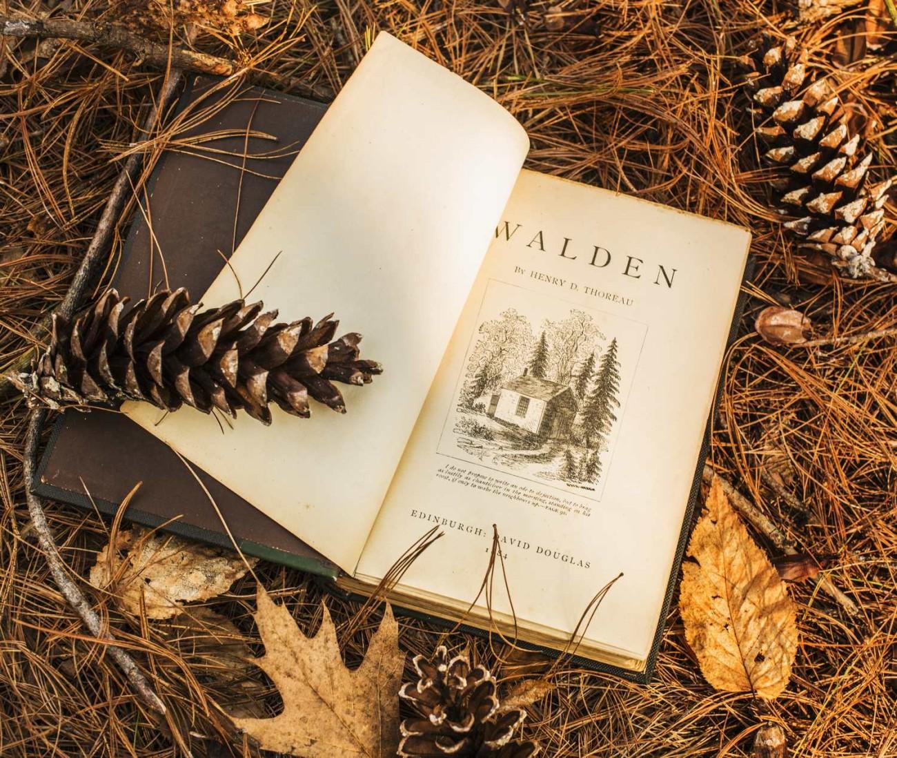 Walden Pond 32