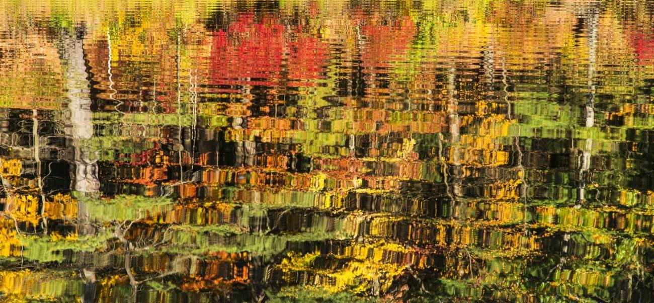 Walden Pond 47