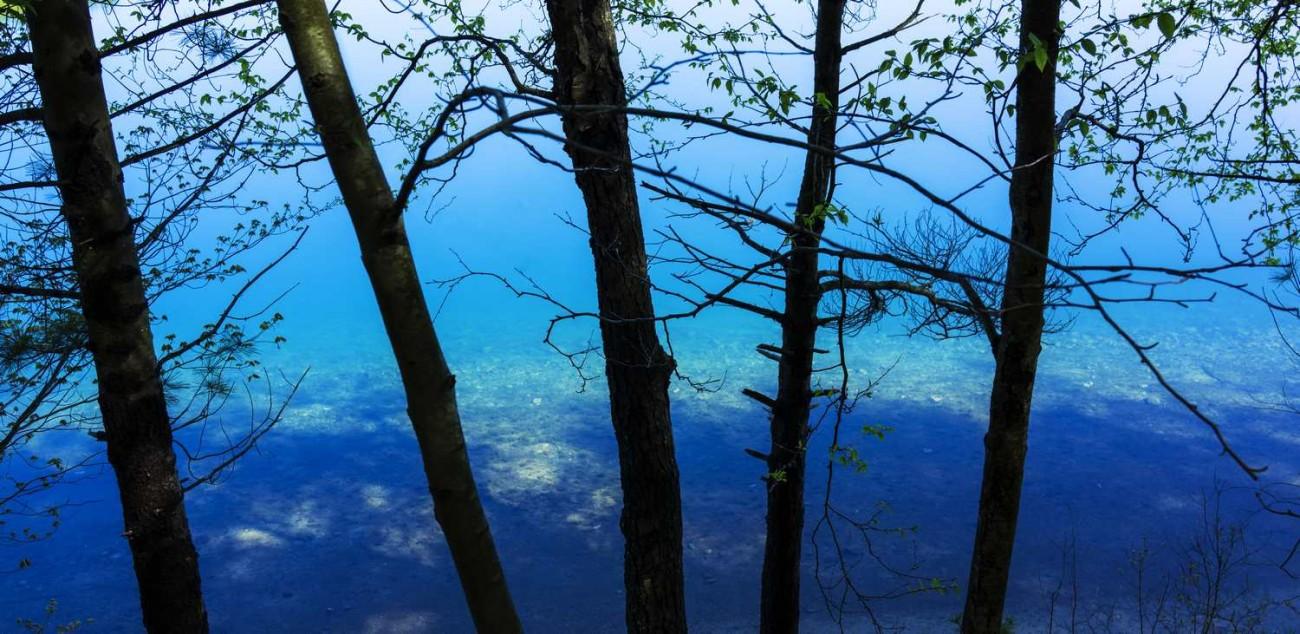 Walden Pond 33
