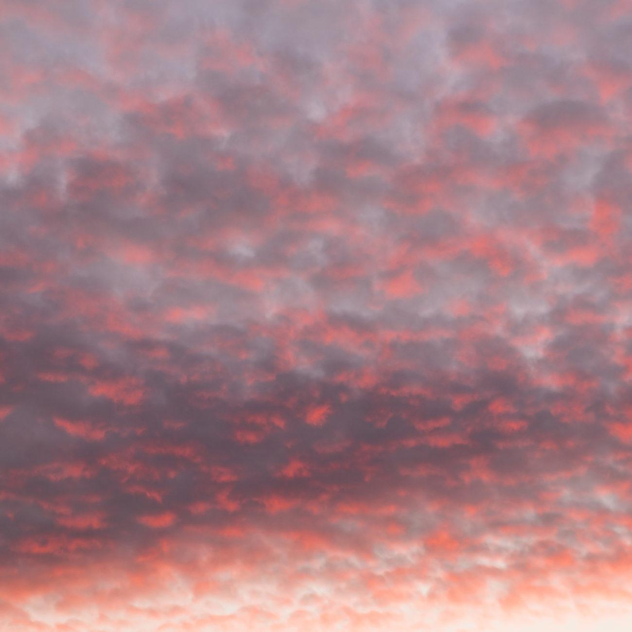Buttermilk sunrise, 2015