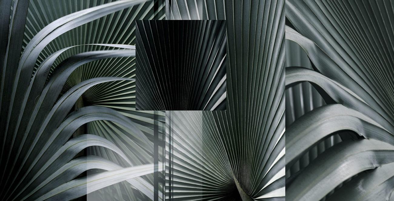 Palm Azul