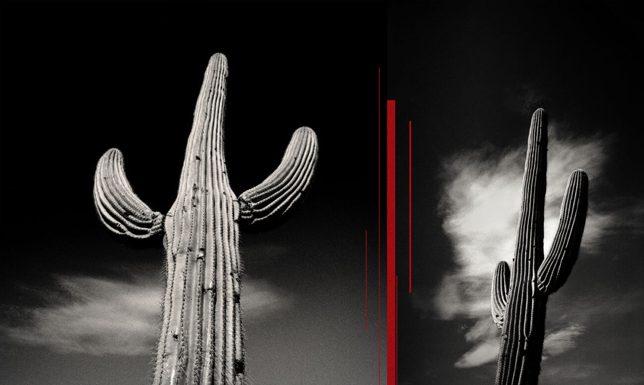 Saguaro with clouds and red lines