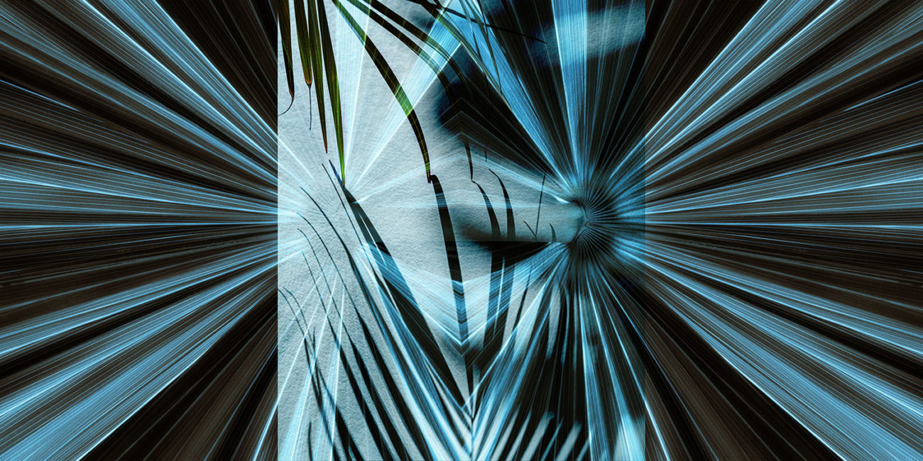 Tropical leaf abstraction