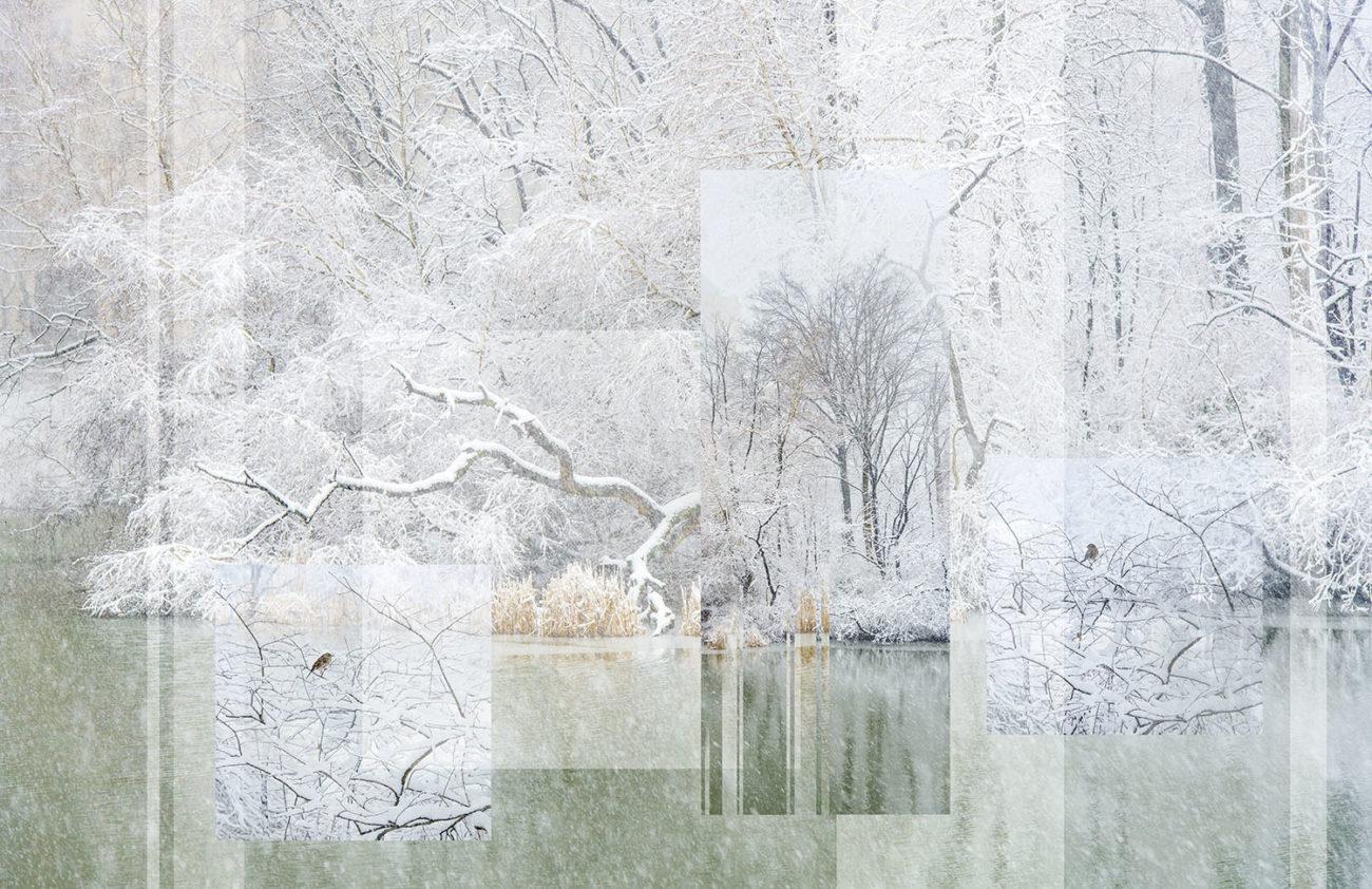 Snow storm on The Pond